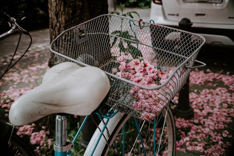 Fahrradkette wechseln