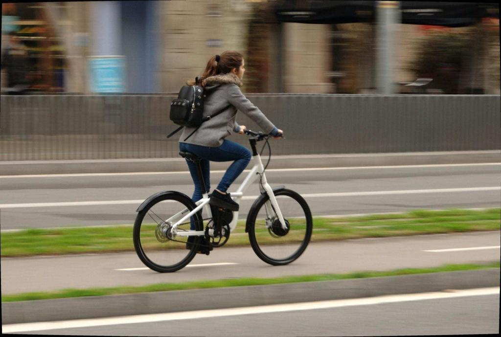 bicicleta eléctrica carmela